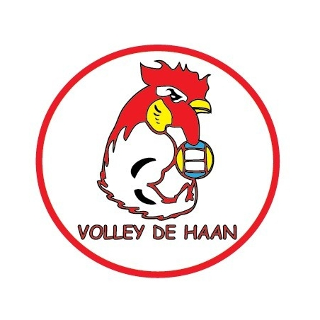 Volleybal De Haan